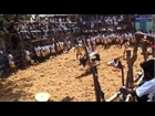 ALANGANALLUR JALLIKATTU 2013 (Madurai, India) by shiva iPhone 8hft1