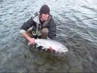 Sweet Steelhead Fishing in BC!