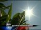 Dryland Crops Need More Moisture 6PM Report